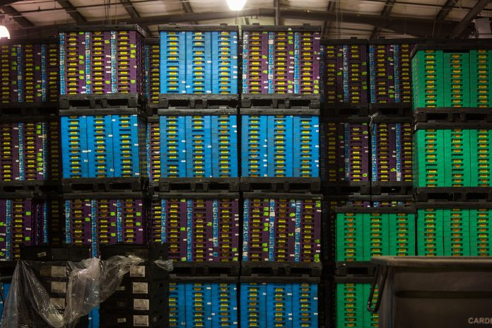 Crates and boxes are seen stacked on shelves in a warehouse